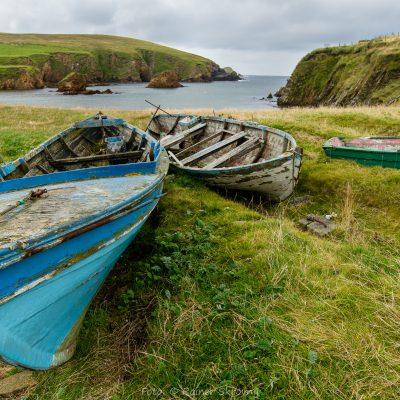 Shetland (Foto: Rainer Skrovny / ARR Reisen)