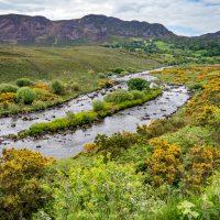 Irland, Ring of Kerry (Foto: Rainer Skrovny, ARR Reisen)