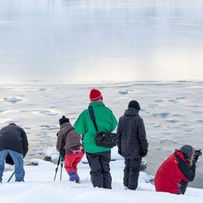 Norwegen, Troms og Finnmark (Foto: Christine Emberger, ARR Reisen)