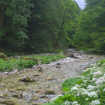 Oberösterreich, Bodinggraben (Foto: Reinhard Wogritsch, ARR)