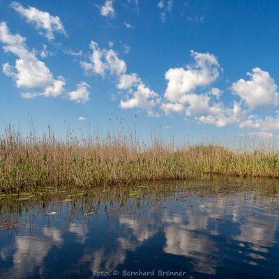 Rumänien, Donaudelta (Foto: Bernhard Brenner)