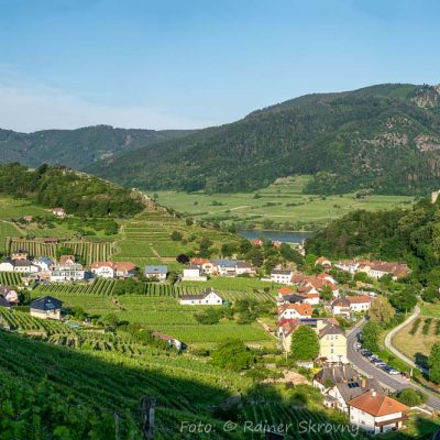 Wachau, Blick auf Spitz, Weingärten (Foto: Rainer Skrovny, ARR Reisen)