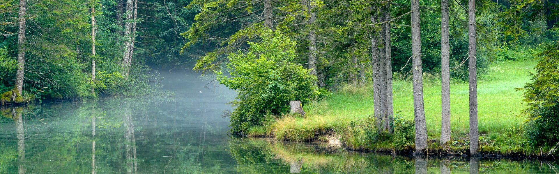Oberösterreichs Wasserwelten (Foto: Wolfgang Harnisch)