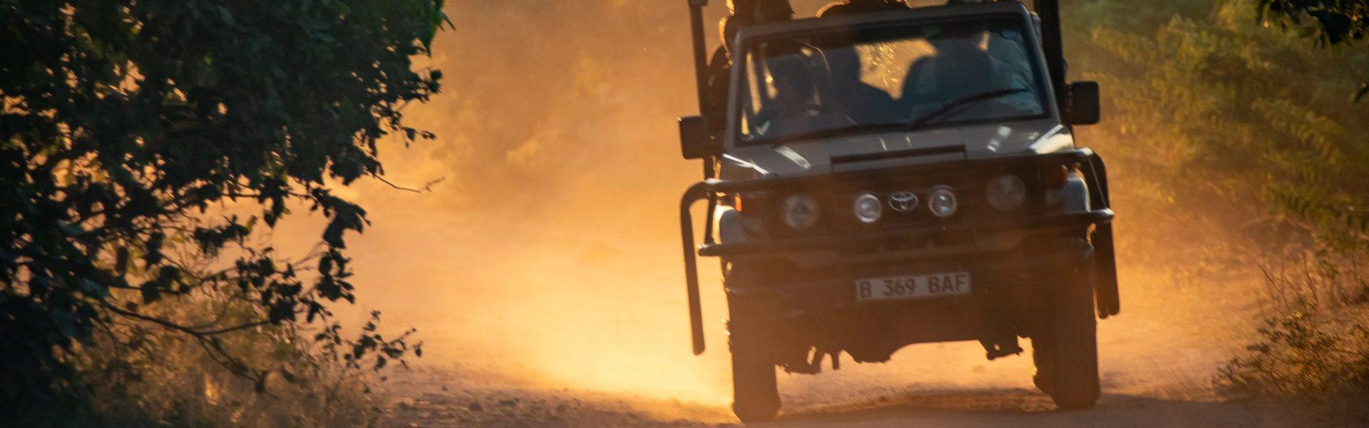 Safari (Foto: Rainer Skrovny, ARR Reisen)