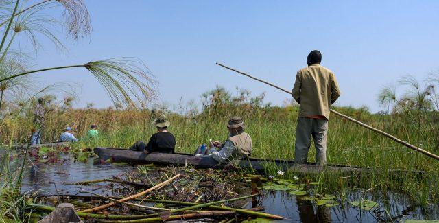 Unsere ARR NATUR Reisen führen nicht nur auf Safari in Nationalparks, sondern umfassen auch Reisen zu großartigen Naturlandschaften.