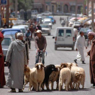 Stosszeit in Marrakeschs Straßen