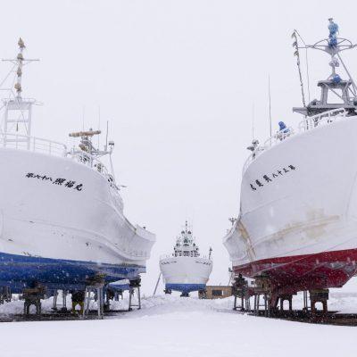 Japan, Hokkaido / Abashiri Fishing harbour
